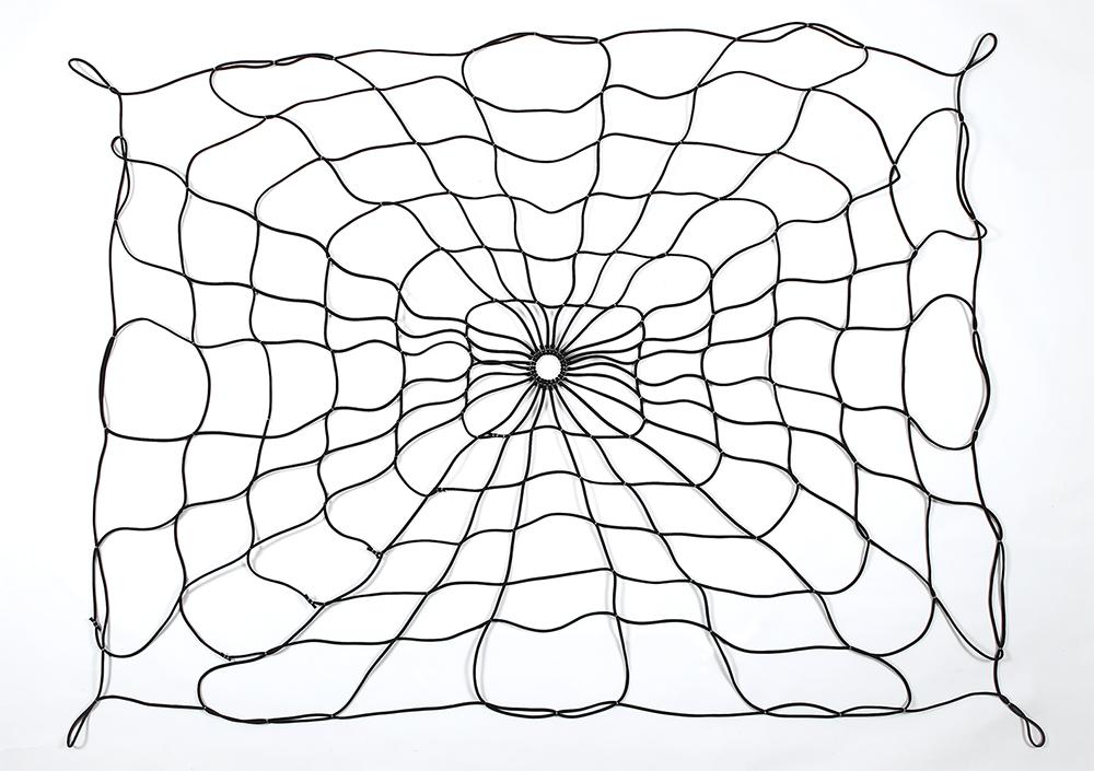 Spider Net (Bed Webb)